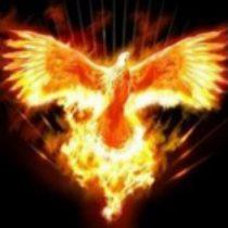 phoenix-210x210